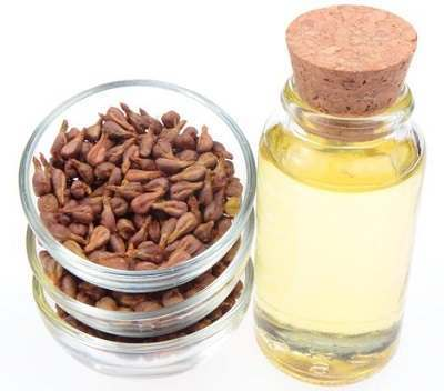 Using Antifungal Herbs to Treat Ringworm